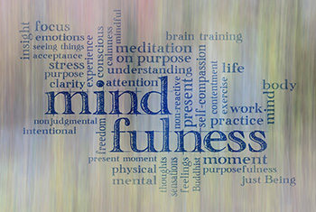 The Everyday Mindfulness Model